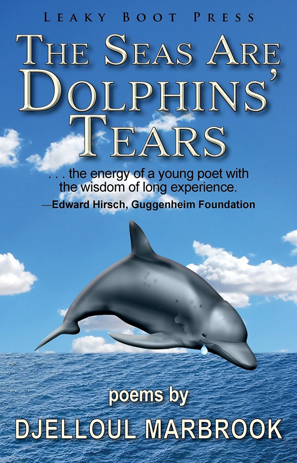 seas are dolphins tears