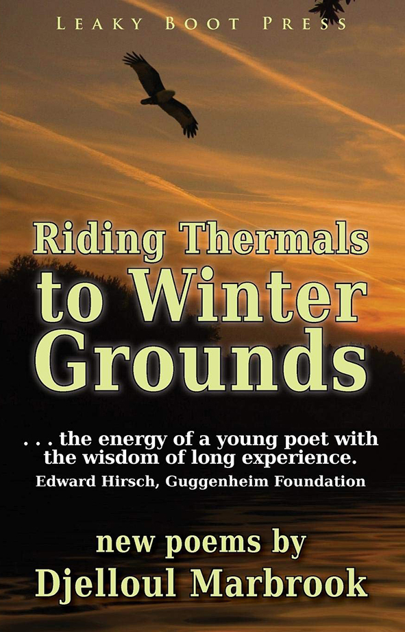 Riding thermals to winter grounds